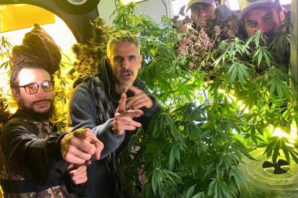 """Los Cafres reivindican el uso medicinal del cannabis en """"La flor"""""""