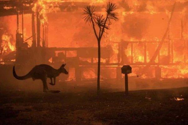 Metallica y Elton John se suman a las donaciones para combatir los incendios en Australia